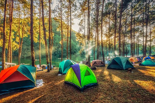 sapancada kamp